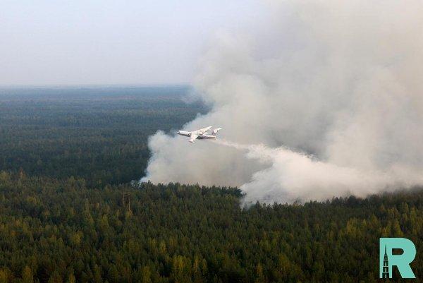 На тушение лесных пожаров правительство выделит 6 миллиардов рублей
