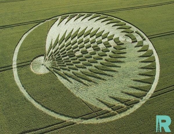 Ученые объяснили появление на полях таинственных кругов