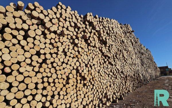 Россия может перестать экспортировать лес в Китай