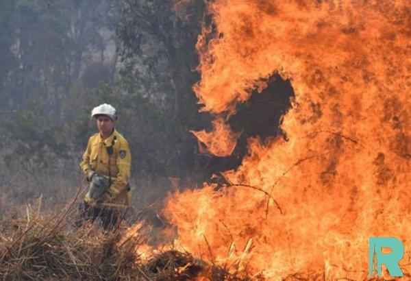 В Австралии из-за лесных пожаров погибло два человека