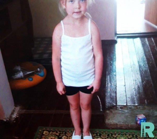 Для поиска в Крыму пятилетней девочки задействовали беспилотники